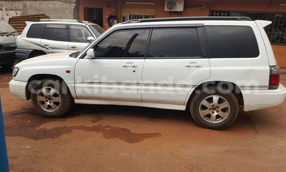 Buy Used Toyota Surf White Car in Arua in Uganda
