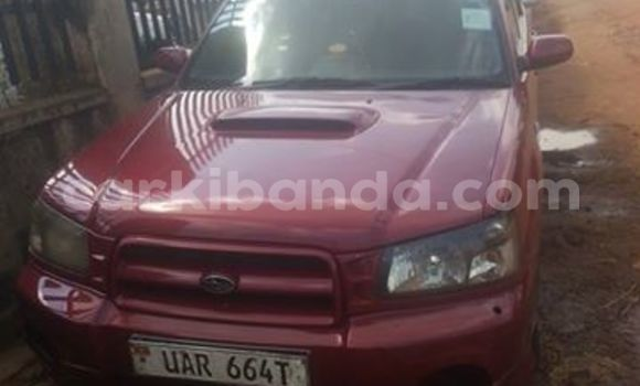 Buy Used Subaru Outback Black Car in Kampala in Uganda