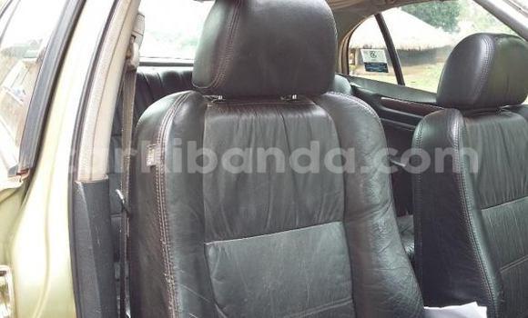 Buy Used Honda Accord Black Car in Kampala in Uganda