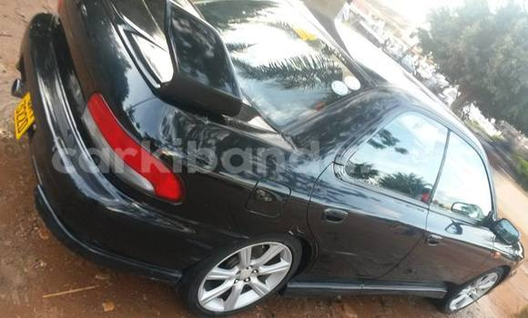 Buy Used Toyota Surf Car in Arua in Uganda