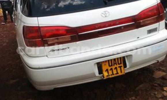 Buy Used Toyota Avensis Black Car in Kampala in Uganda