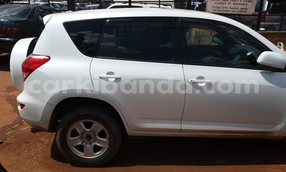Buy Used Toyota RAV4 White Car in Arua in Uganda