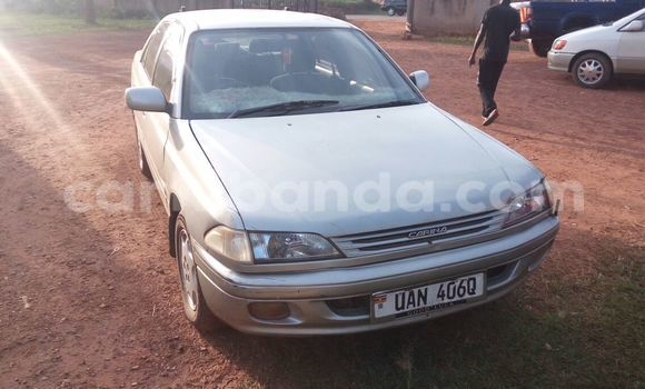 Buy Used Toyota Carina Silver Car in Arua in Uganda