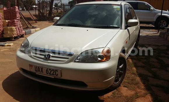 Buy Used Honda Civic White Car in Arua in Uganda
