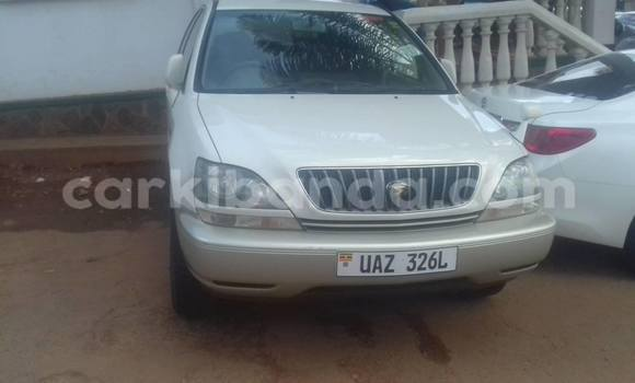 Buy Used Toyota Harrier White Car in Kampala in Uganda