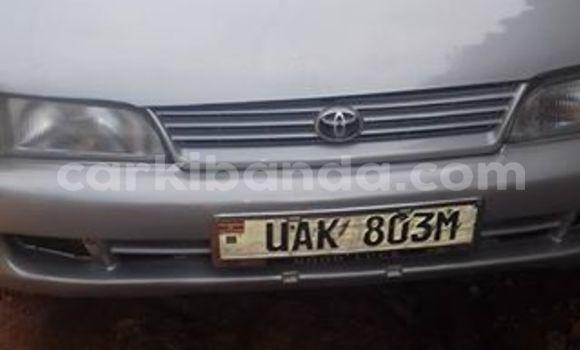 Buy Used Toyota Corolla Silver Car in Kampala in Uganda