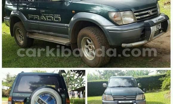 Buy Used Toyota Land Cruiser Car in Kampala in Uganda