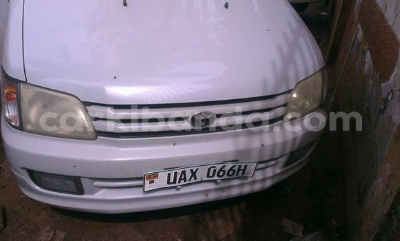 Buy Used Toyota Noah Other Car in Arua in Uganda