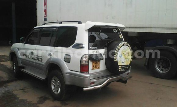 Buy Used Toyota Prado White Car in Kampala in Uganda