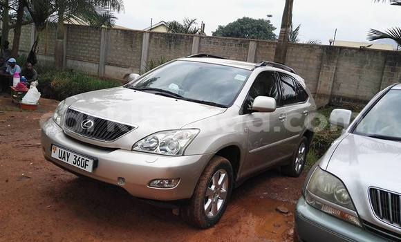 Buy Used Toyota Highlander Silver Car in Arua in Uganda