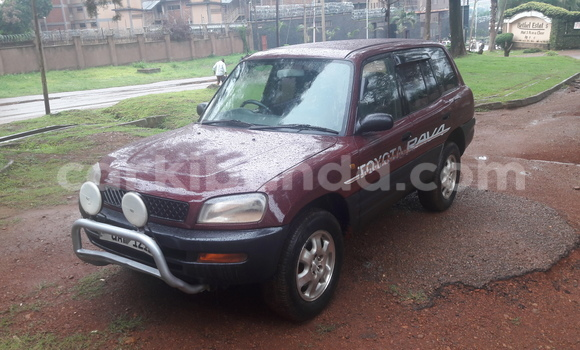Buy Used Toyota RAV4 Other Car in Arua in Uganda