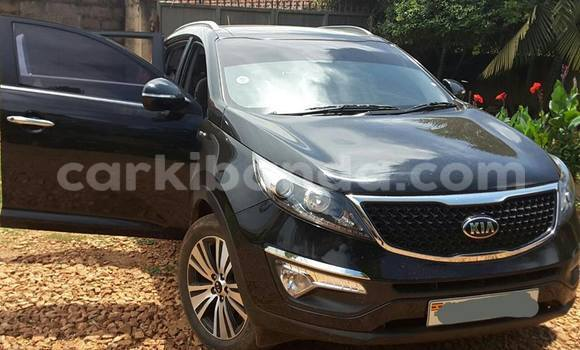 Buy Used Kia Sportage Black Car in Kampala in Uganda