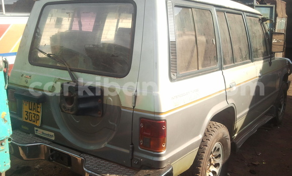 Buy Used Mitsubishi Space Wagon Car in Arua in Uganda
