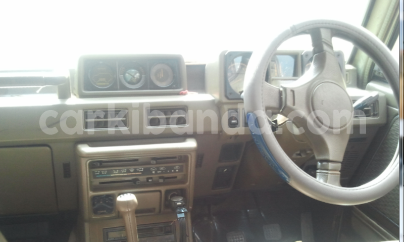 Big with watermark interior.png2
