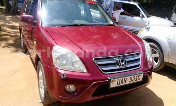 Buy Used Honda CR-V Red Car in Kampala in Uganda