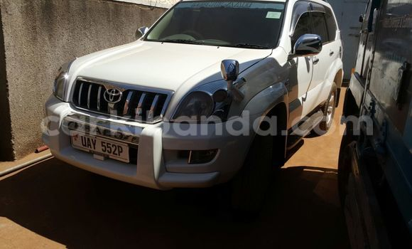 Buy Used Toyota Land Cruiser Prado White Car in Arua in Uganda