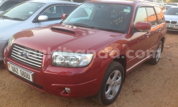 Buy New Subaru Forester Red Car in Arua in Uganda