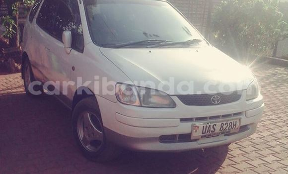 Buy Used Toyota Spacio White Car in Kampala in Uganda