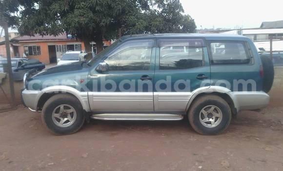 Buy Used Nissan Terrano Car in Arua in Uganda
