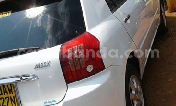 Buy Used Toyota Allex White Car in Kampala in Uganda