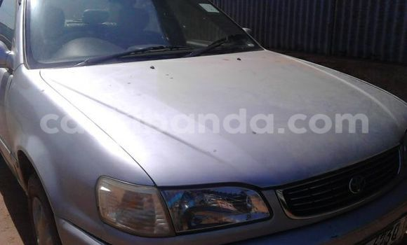 Buy Used Toyota Corolla Silver Car in Gulu in Uganda