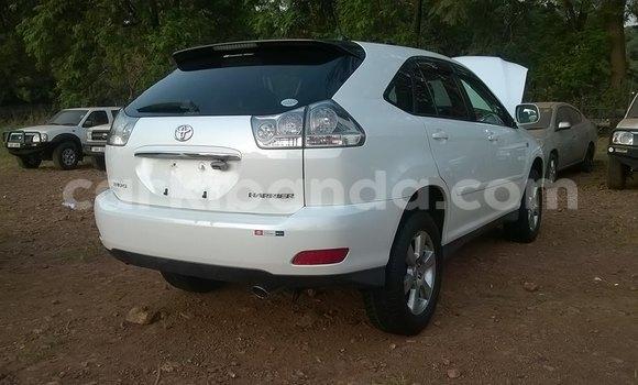 Buy Used Toyota Harrier White Car in Kampala in Uganda