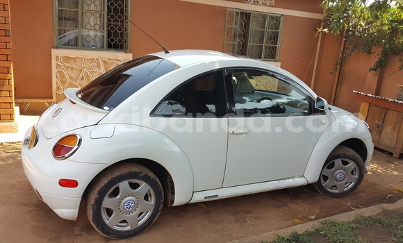 Buy Used Volkswagen Beetle White Car in Arua in Uganda