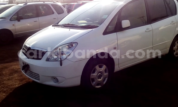 Buy Used Toyota Spacio White Car in Arua in Uganda