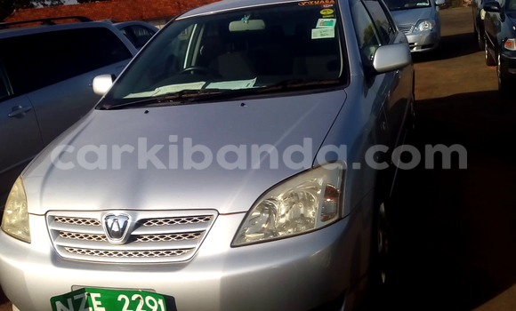 Buy Used Toyota Allex White Car in Arua in Uganda
