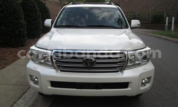 Buy New Toyota Land Cruiser White Car in Masaka in Uganda