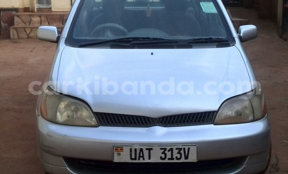 Buy New Toyota Platz Silver Car in Arua in Uganda
