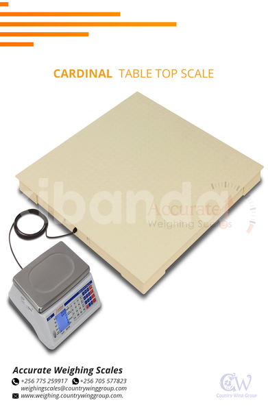 Big with watermark cardinal table top scale 7 jpg
