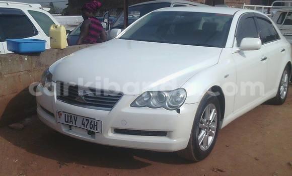 Buy Used Toyota Mark X White Car in Arua in Uganda