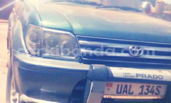 Buy Used Toyota Prado Green Car in Kampala in Uganda