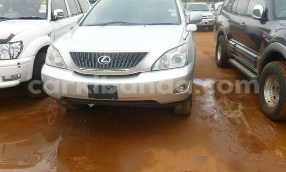 Buy Used Lexus ES 300 Other Car in Arua in Uganda