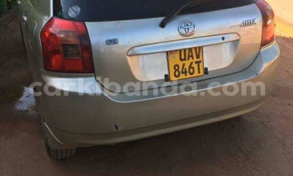 Buy Used Toyota Allex Silver Car in Kampala in Uganda
