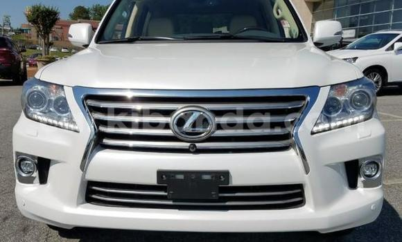 Buy Used Lexus LX White Car in Mukono in Uganda