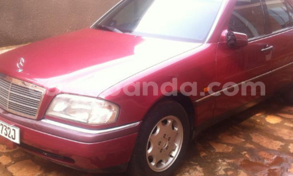 Buy Used Mercedes Benz C-Class Other Car in Arua in Uganda
