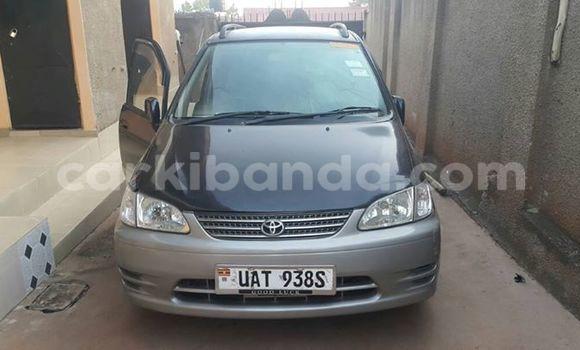 Buy Used Toyota Starlet Black Car in Kampala in Uganda