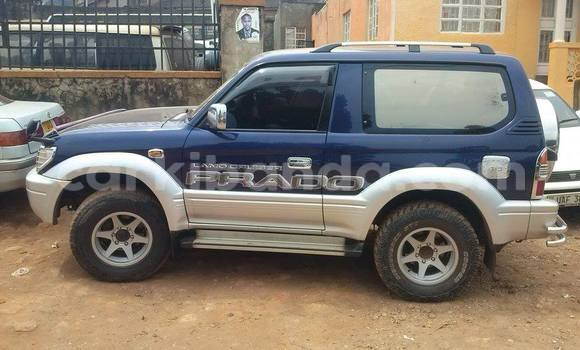 Buy Used Toyota Tacoma Blue Car in Arua in Uganda