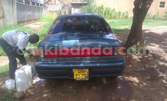 Buy Used Toyota Corsa Blue Car in Kampala in Uganda