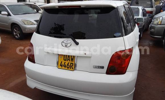 Buy Used Toyota IST White Car in Kampala in Uganda
