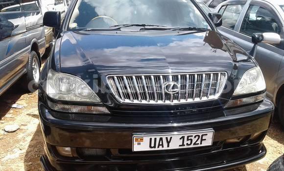 Buy Used Toyota Harrier Black Car in Kampala in Uganda