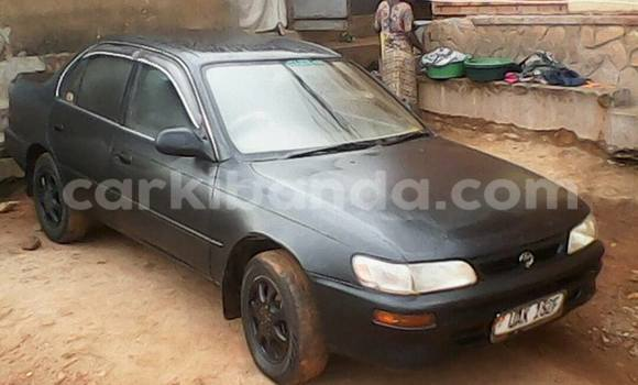 Buy Used Toyota Corolla Black Car in Kampala in Uganda