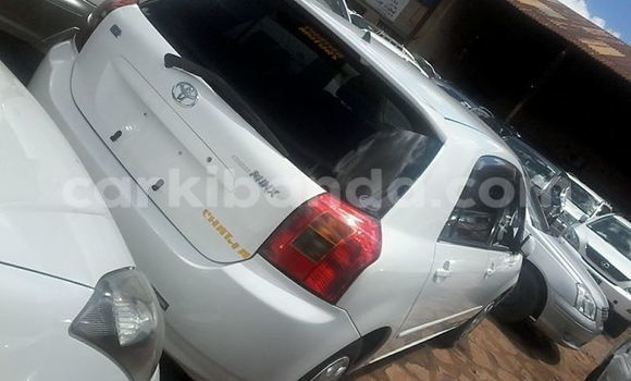 Buy Used Toyota Runx White Car in Kampala in Uganda
