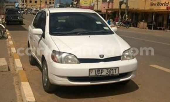 Buy Used Toyota Platz White Car in Kampala in Uganda