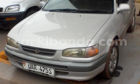 Buy Used Toyota Corolla Other Car in Arua in Uganda