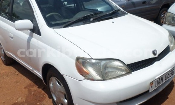 Buy Used Toyota Platz Black Car in Arua in Uganda