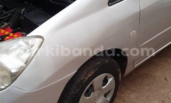 Buy Used Toyota Spacio Silver Car in Kampala in Uganda