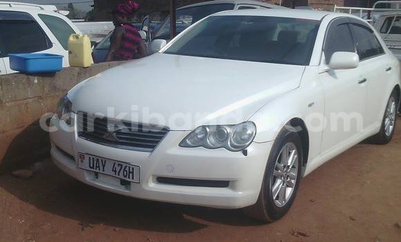 Buy Used Toyota Mark X White Car in Arua in Uganda